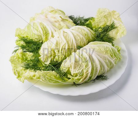 Stuffed Cabbage With Green And Carrot On The Plate