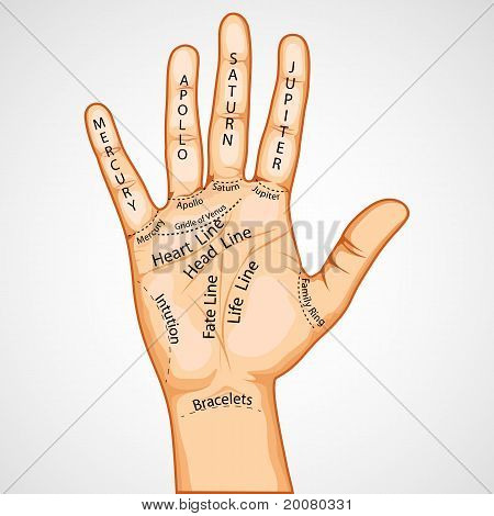illustration of palmistry map on open palm on abstract background poster