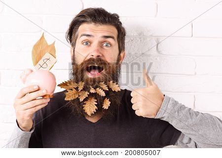 handsome bearded man with stylish mustache and autumn yellow leaves in long beard on smiling face with pink piggy pig bank showing cool on white brick wall background