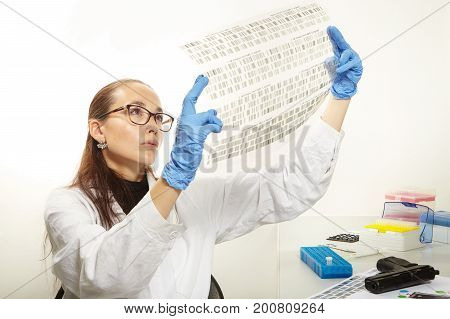 Criminologist lab technician reading film with analysed DNA