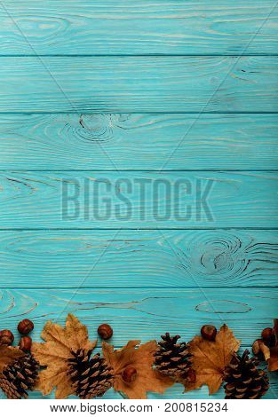 Flat lay frame of autumn leaves cones and nuts on a wooden background of azure color.Selective focus.