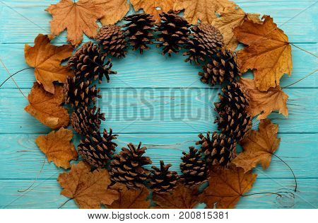 Flat lay frame of autumn leaves cones on a wooden background of azure color. Selective focus.