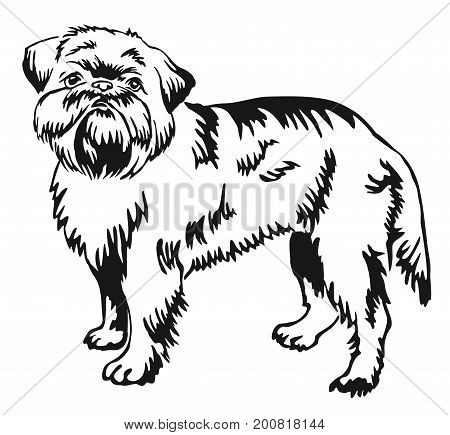 Decorative portrait of standing in profile dog Brussels Griffon vector isolated illustration in black color on white background