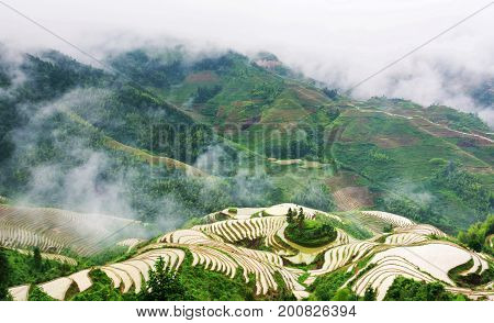 Foggy Mystical Rice Terrace Landscape In Longsheng, China