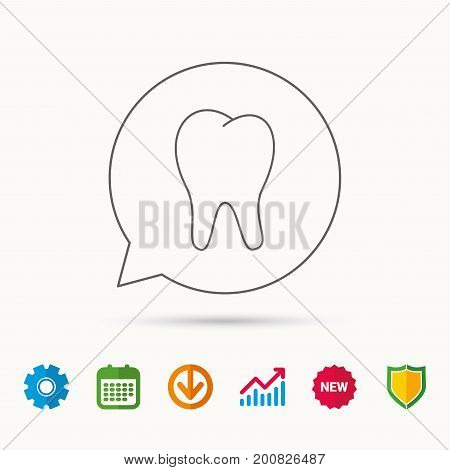 Tooth icon. Stomatology sign. Dental care symbol. Calendar, Graph chart and Cogwheel signs. Download and Shield web icons. Vector
