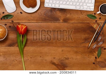 Post blog social media 8 march. View from above with copy space. Banner template layout mockup for woman day. Brown wooden table, top view on workplace. Pink tulips over shabby brown wooden table.