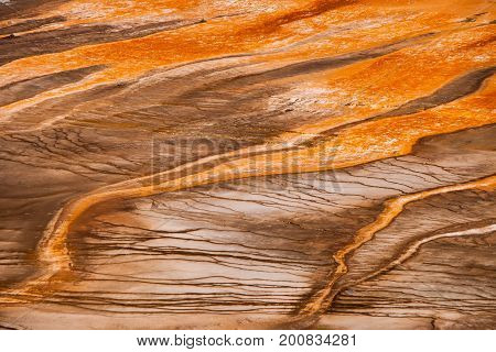 Detailed View Of The Grand Prismatic Spring From Above. Yellowstone National Park, Usa