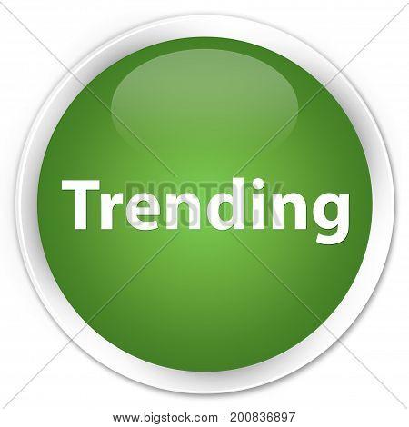 Trending Premium Soft Green Round Button