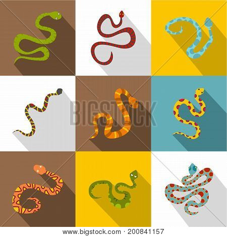 Poisonous snakes icons set. Flat set of 9 poisonous snakes vector icons for web with long shadow