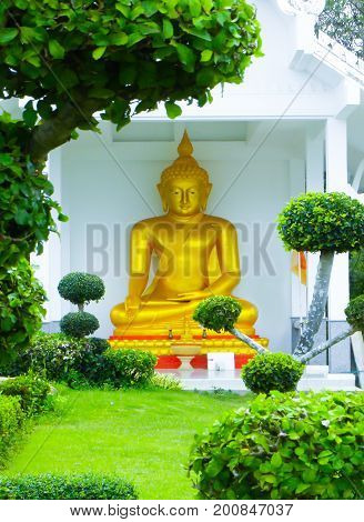 Golden Buddhist temple statue tucked away behind bright green foliage.