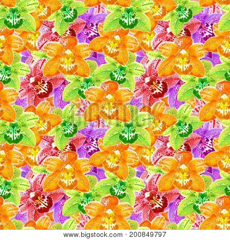 Orchid Phalaenopsis. Texture of flowers. Seamless pattern for continuous replicate. Floral background photo collage for production of textile cotton fabric. For use in wallpaper covers