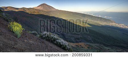 Teide National Park Tenerife,Teide Volcano,Spain,Tenerife.View of volcano and ocean