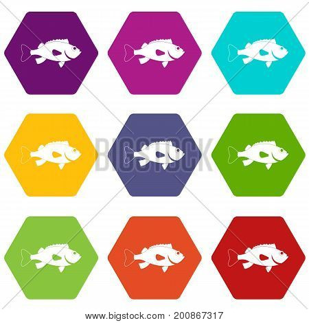 Sea bass fish icon set many color hexahedron isolated on white vector illustration
