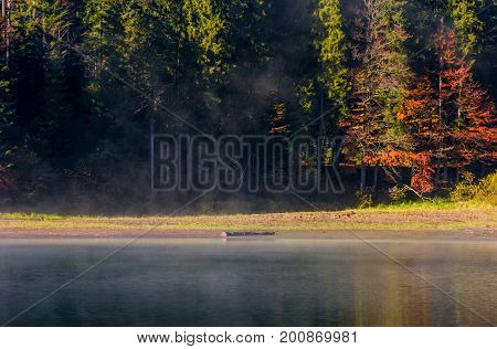 Fog On The Lake In Autumnal Forest