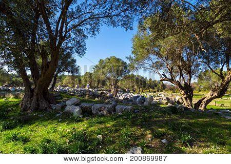Ruins On Teos Ancient City