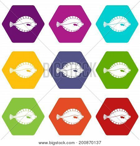Flounder icon set many color hexahedron isolated on white vector illustration