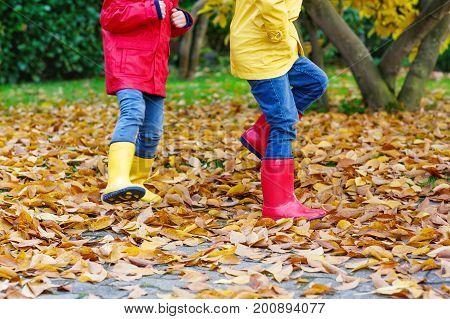 Two little children playing in red and yellow rubber boots in autumn park in colorful rain coats and clothes. Closeup of kids legs in shoes dancing and walking through fall autumnal leaves and foliage.