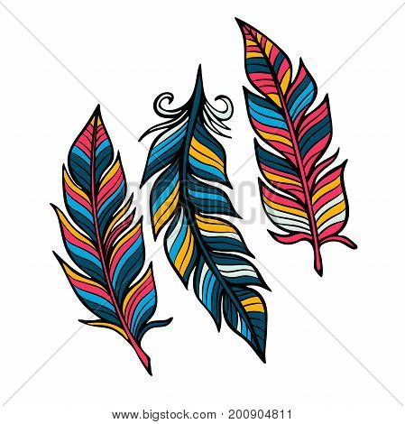Feathers vector set in a flat style. Icons feathers isolated on a light background. Simple icons feathers as elements for design.