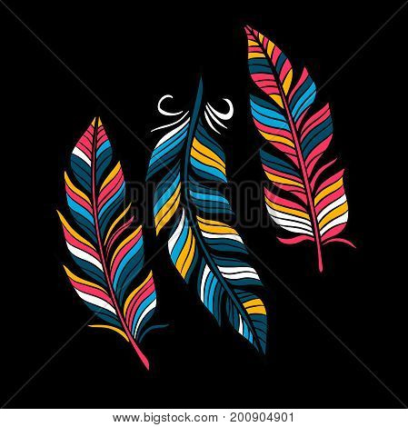 Colored Feathers in a flat style. Isolated on a black background. Vector illustration . Simple icons feathers as elements for design.