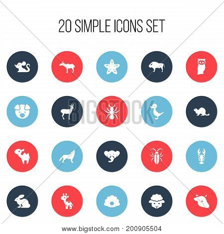 Set Of 20 Editable Zoo Icons. Includes Symbols Such As Bedbug, Bull, Giraffe And More