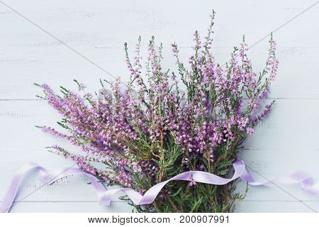 Bouquet of heather (calluna vulgaris erica ling) decorated satin ribbon on blue vintage background from above. Beautiful pink flower for greeting card.