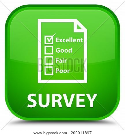 Survey (questionnaire Icon) Special Green Square Button