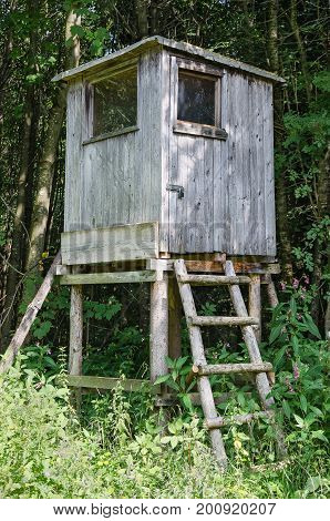 Wooden deer stand in a forest, vertical view. Box stand, also tree stand. Enclosed platform to elevate the hunter for a better vantage point and to keep him hidden. Heuberg, Salzburg, Austria. Photo.