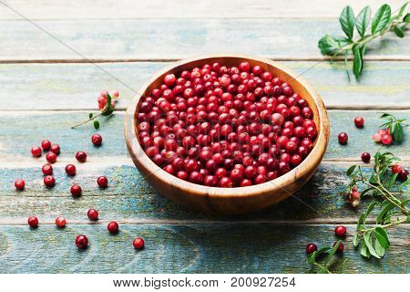 Fresh cowberry (lingonberry partridgeberry foxberry) in wooden bowl on rustic vintage table.