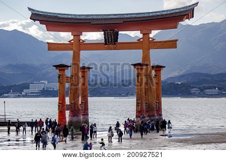 JAPAN, MIYAJIMA, APRIL, 06, 2017 - Miyajima island, the famous Itsukushima Floating Torii gate, Japan.  Among the visitors of this picturesque place it is customary to leave coins in the cracks of the supports of the ritual gates and make wishes. Walk to