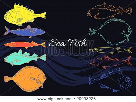 Set of sea fish on a black background. Perch cod mackerel flounder saira. Vector color doodle. Art line elements for your template. Illustration isolated and grouped for easy editing.