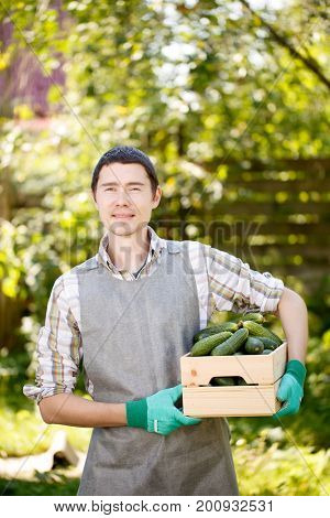 Photo of agronomist with cucumbers