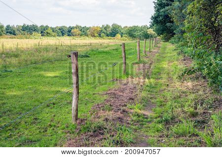 Foot path between trees and an electric with barbed wire and wooden poles in natural area in the Netherlands. It's a cloudy day in the summer season.