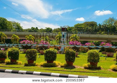 The Clock Tower And Flowers, In The Distance The Temple Bem Canada Hill. Miri City, Borneo, Sarawak,