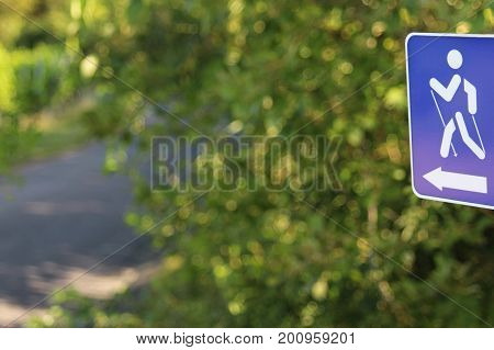 blue nordic walking sign and a walking path golden sunlight green nature
