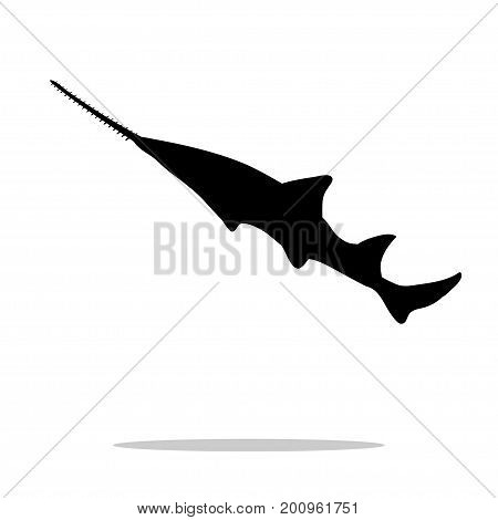 Sawfish fish black silhouette aquatic animal. Vector Illustrator.