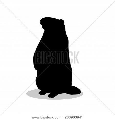 Groundhog rodent black silhouette animal. Vector Illustrator.