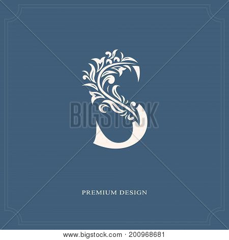 Elegant Letter S. Graceful Royal Style. Calligraphic Beautiful Logo. Vintage Drawn Emblem For Book D