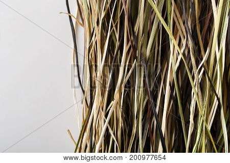 Dry cane or hay textured background closeup on white with copy space