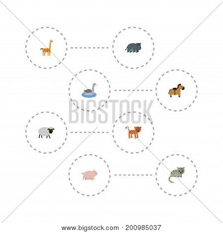 Flat Icons Waterbird, Camelopard, Kitty And Other Vector Elements