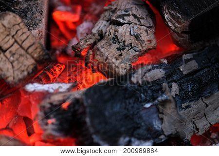 Photo of beautiful hot embers of wood close up