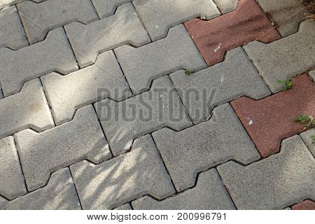 Roadway / The street is paved with cobblestones