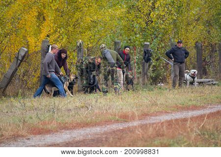 Kiev Ukraine - October 25 2015: Instructor trains aggressive guard dogs when their owners
