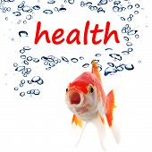 word health and goldfish showing spa or healthy lifestyle concept poster
