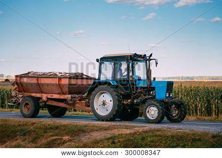 Malyye Avtyuki, Belarus - September 9, 2016: Tractor The Mtz-82 The Belarus On Country Road. Belarus