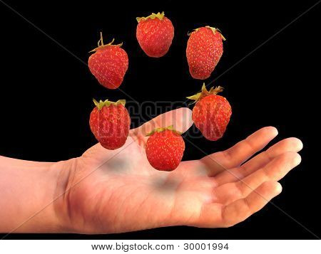 Berries Over A Palm