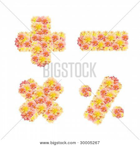 Flower Alphabet Isolated On White ( + - * / )