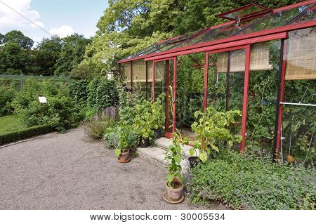 Tidy Greenhouse
