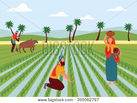 Indian Male And Female Farmers Working In Paddy Field Flat Cartoon Style