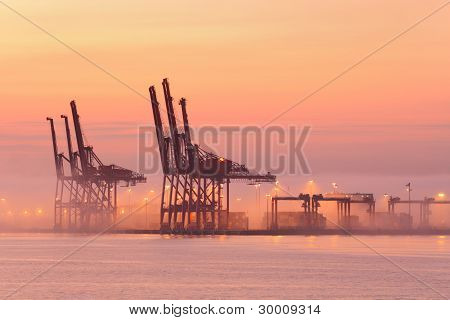 Port of Vancouver Cranes, Morning Fog