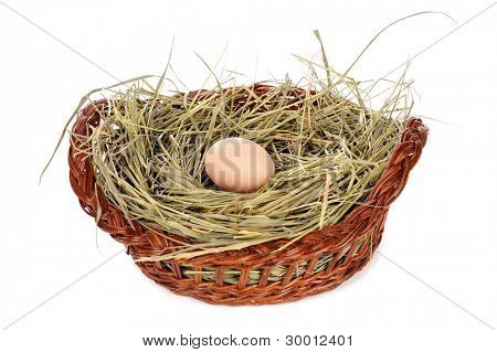 Egg in a basket on white